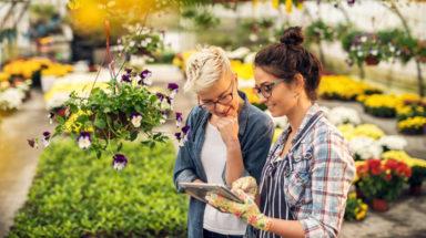 Women talking in a garden